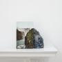 Stuart Whipss, A postcard of Victoria Falls leaning against a geological sample from John Latham's mantlepiece, 2012