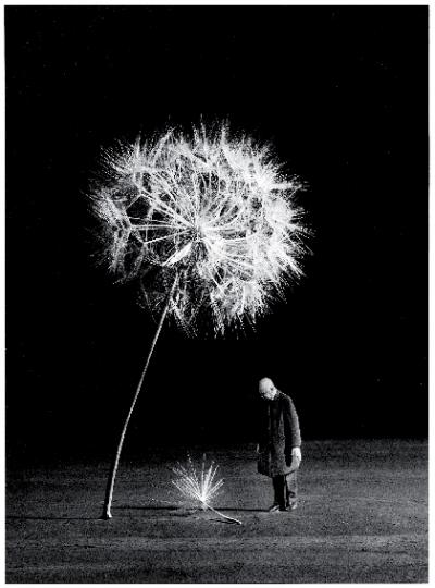 rencontre photographie arles 2012