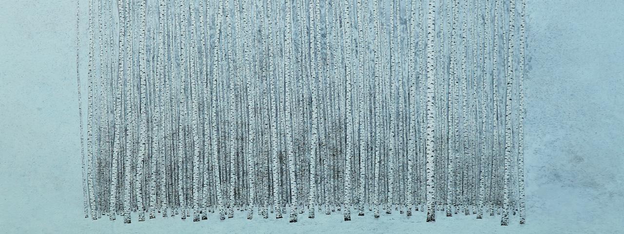Des arbres en hiver et jardins d 39 hiver domaine de chaumont sur loire - Exemple de jardinieres d hiver ...